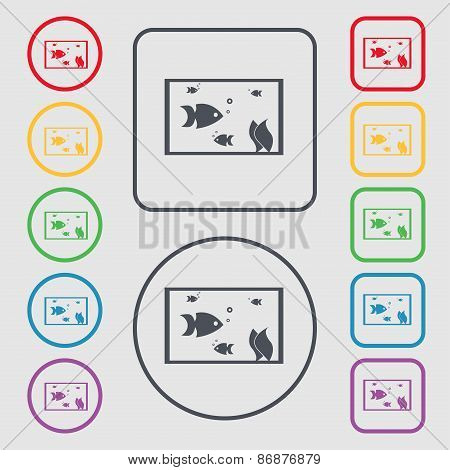 Aquarium, Fish In Water Icon Sign. Symbol On The Round And Square Buttons With Frame. Vector