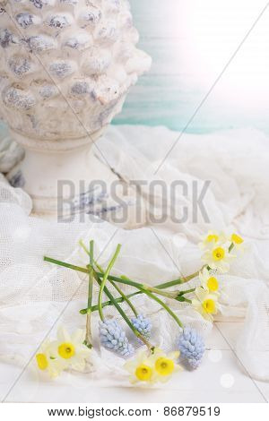 Postcard With Fresh Flowers Daffodils, Muscari And Decotative Cone