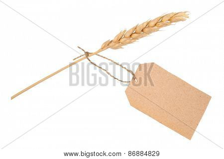 Wheat ear with  tag