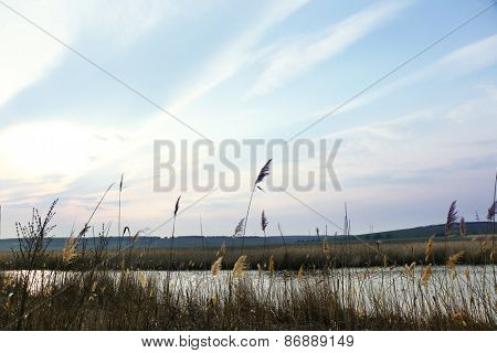 Beautiful view of blue sky and dried grass over river