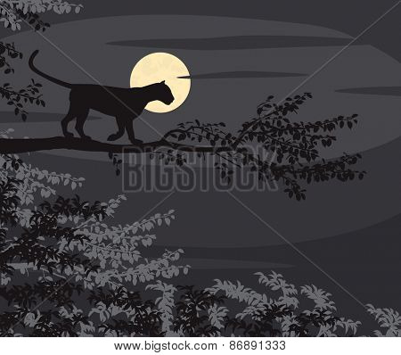 Cutout illustration of a leopard on a tree branch silhouetted against the moon at night