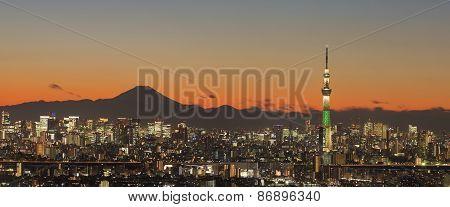 Tokyo skytree and mountain fuji