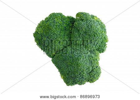 Head Of Farm Fresh Healthy Green Broccoli
