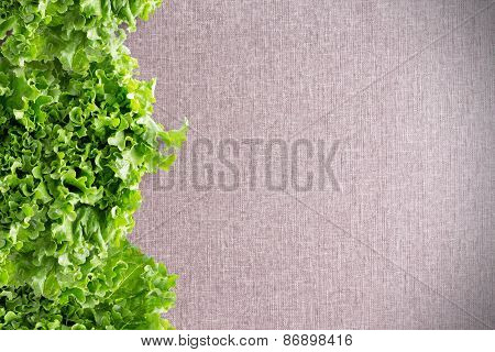 Border Of Crisp California Lettuce On Textile