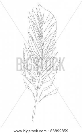 Feather, Low polygon linear illustration
