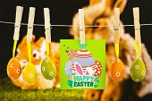 picture of taxidermy  - happy easter graphic against ginger bunny rabbit - JPG