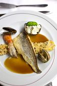 picture of shell-fishes  - Fish cereals langoustine and shells on a plate - JPG