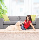 picture of petting  - Young woman petting a dog seated on carpet next to a modern gray sofa at home shot with tilt and shift lens - JPG