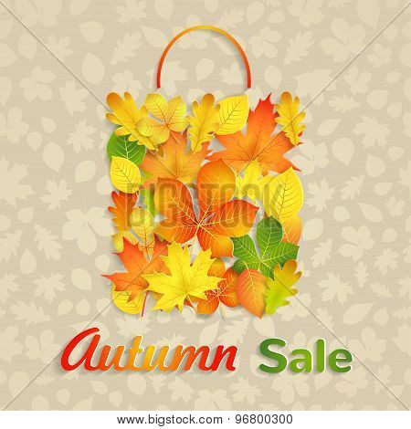 Sale Bag Of Autumn Leaves