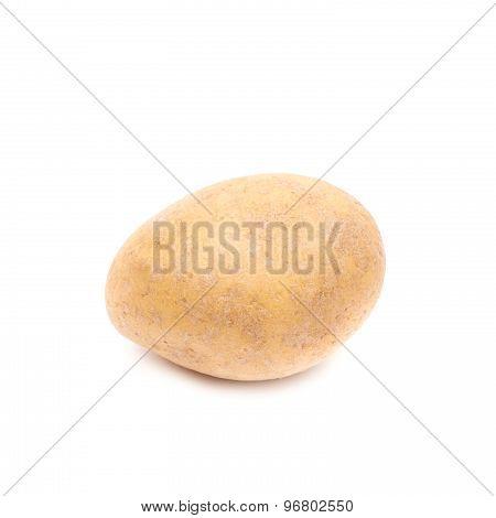 Brown potato isolated