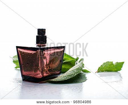 Red Female Perfume