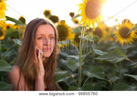 Frustrated girl talking on the phone on among sunflowers at sunset