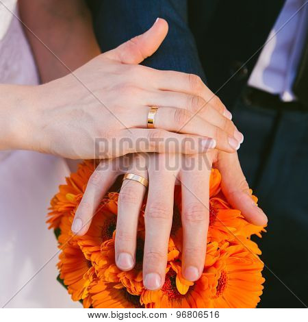 Brides and Grooms Hands with Wedding Rings on Fingers