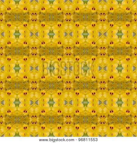 Nobile Orchid Seamless Pattern Background