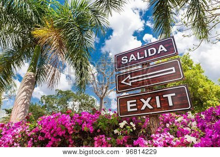 Sign Salida Exit With Arrow