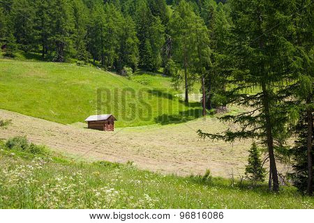 Small Wooend Hut In The Dolomites