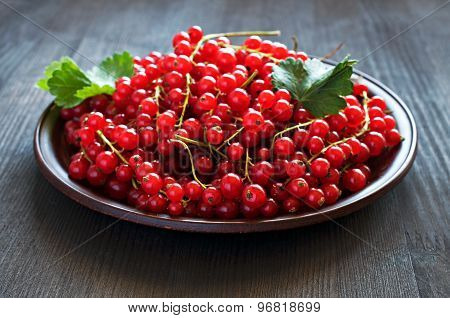 Red Currants On A Clay Plate