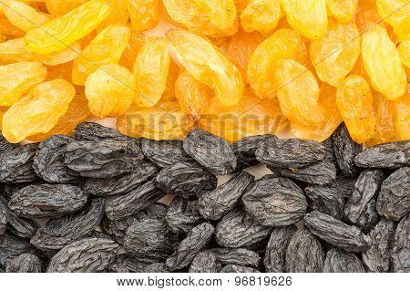 Yellow and black  raisins.