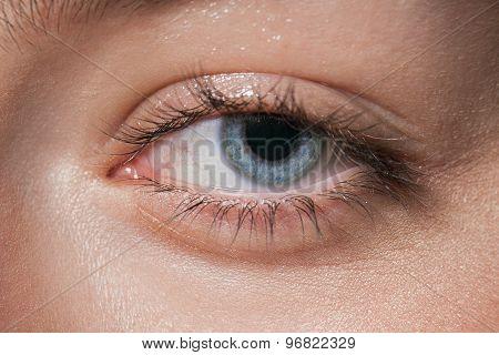 Macro image of human blue eye looking at camera. Tired eyes