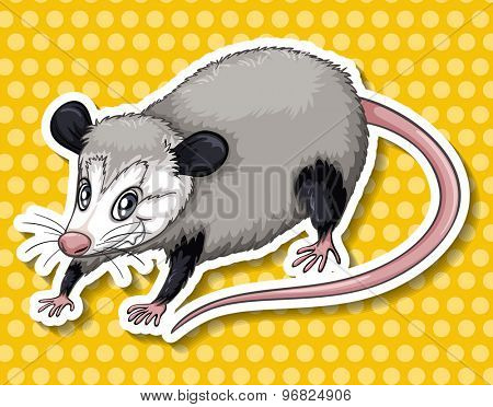 Sticker of a cunning looking rat on yellow background