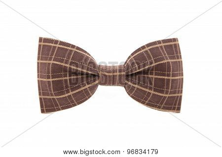 Brown striped men's bow tie isolated on white background.