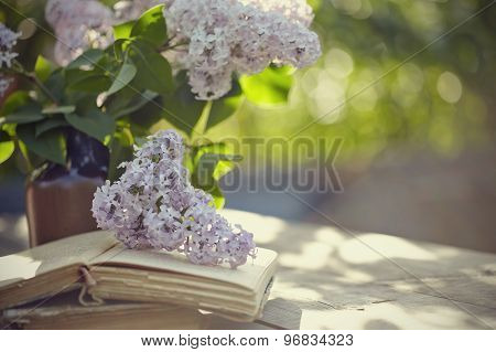 Bouquet Of A Lilac And Old Books