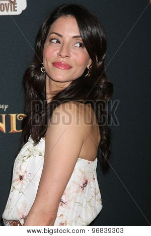 LOS ANGELES - JUL 24:  Emmanuelle Vaugier at the