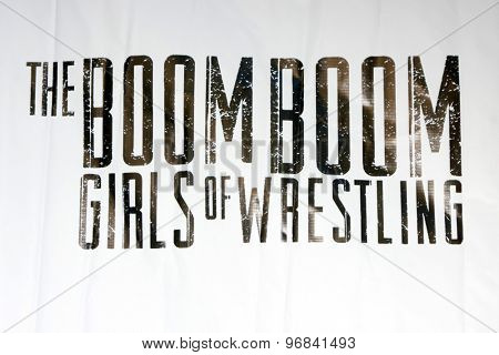 LOS ANGELES - JUL 23:  The Boom Boom Girls of Wrestling Emblem at the