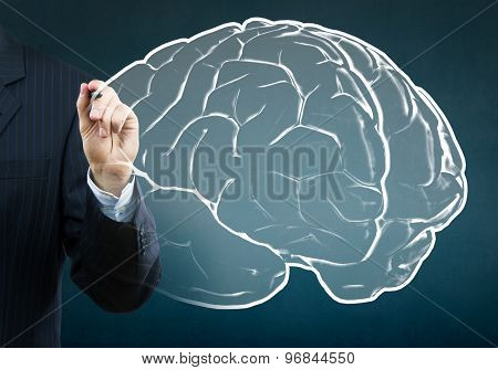 Businessman drawing brain