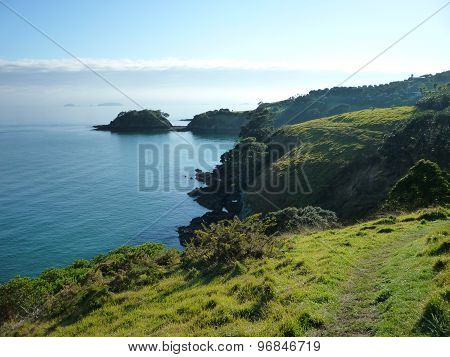 Waiheke Island coastline at low tide
