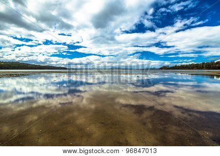 Tasmania reflected