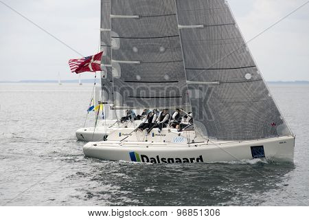 Matchracing Action