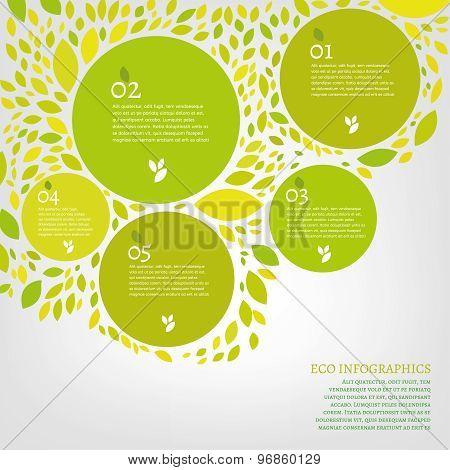 Leaf infographic