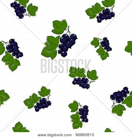 Seamless Pattern Of Blackcurrant