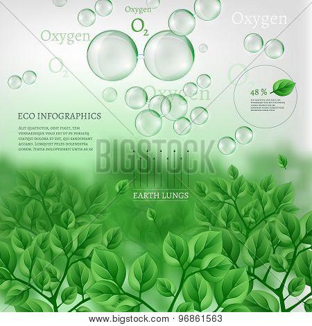 02 Infographics Bio Tree