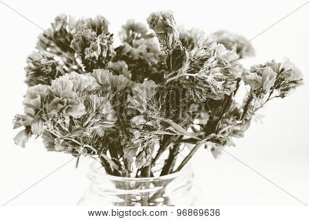 Dry Bouquet Small Flowers In Monochrome Tone