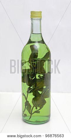 Medical Herb Liqueur