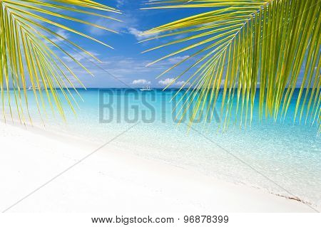 Tropical Landscape With Turquoise Sea And White Beach