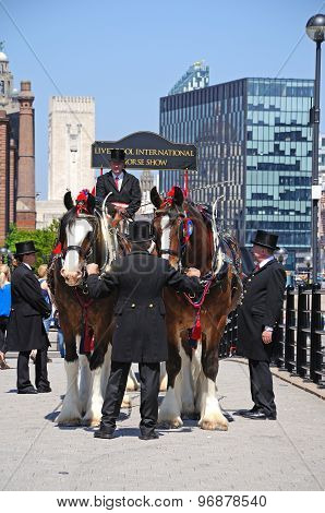 Horse drawn carriage, Liverpool.