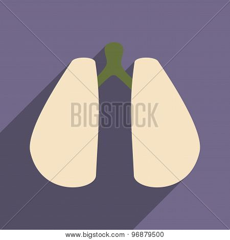 Flat with shadow icon and mobile application lungs