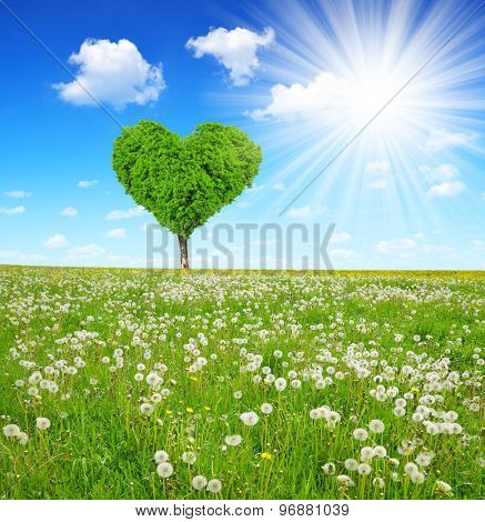 Meadow with tree in the shape of heart