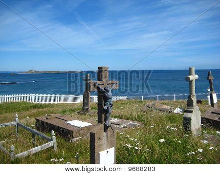 Ile aux Marines, SPM, St Pierre et Miquelon, France