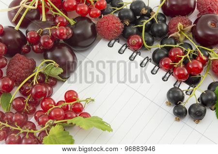 Colorful Red Berry Fruit Around Notebook