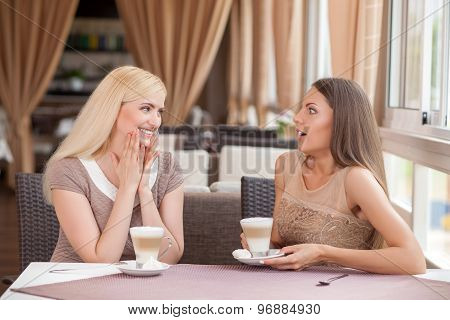 Beautiful young female friends are resting in cafe