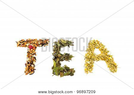 Word Tea Made Of Different Tea Species