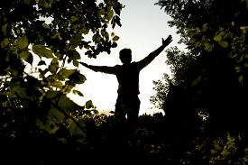 pic of stressless  - Silhouette of a Happy Young Man Opening his Arms for Happiness While Standing at the Fields with Trees - JPG