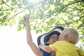 picture of mother baby nature  - Low angle view looking up of a happy stylish young mother with her cute baby teaching him about nature showing a ripening fig on a fig tree against bright sun flare through green leaves on a branch - JPG