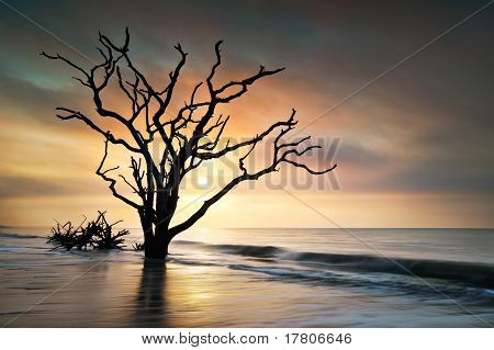 Knochen Hof Sunrise at Botany Bay Beach auf Edisto island