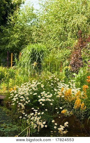Quaint cottage garden with pond and various plants
