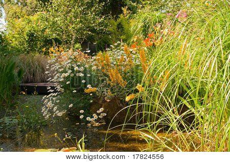 Summer fish pond in quaint cottage garden in England
